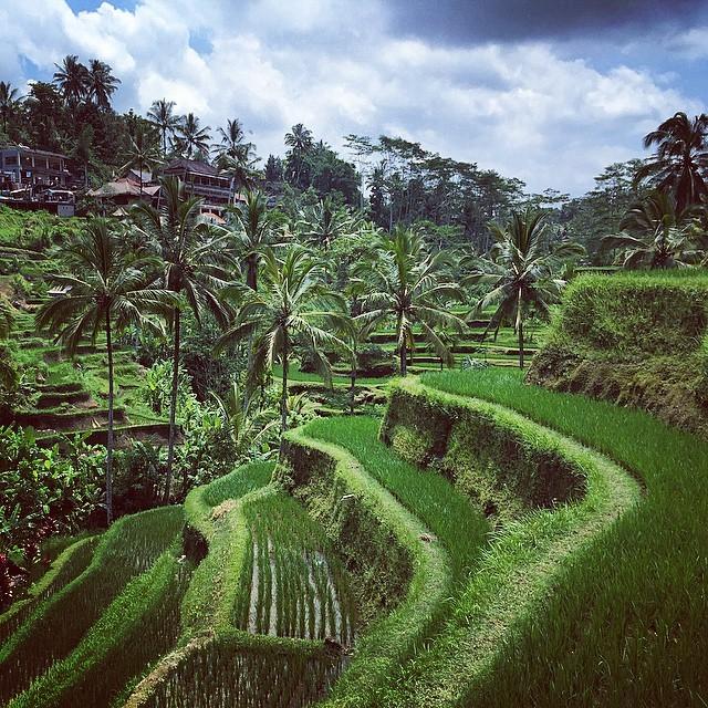 Per Silvia Bali è un'isola che ti resta dentro, con il profumo, i colori ed i sorrisi della gente.